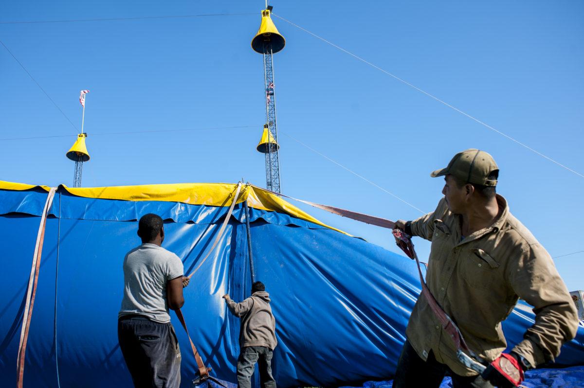 Cole Circus in Manassas