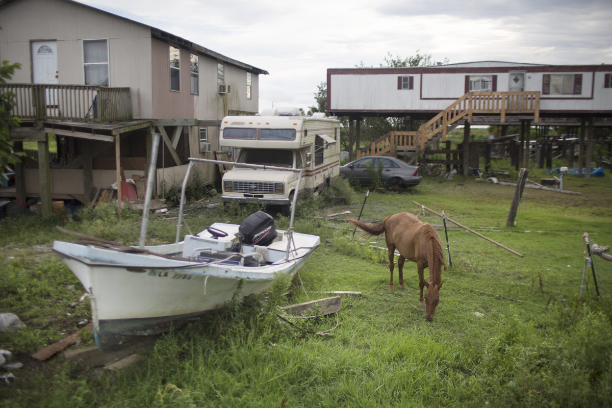A horse grazes on Lower Highway 665 in Montegut, Louisiana near Island Road.